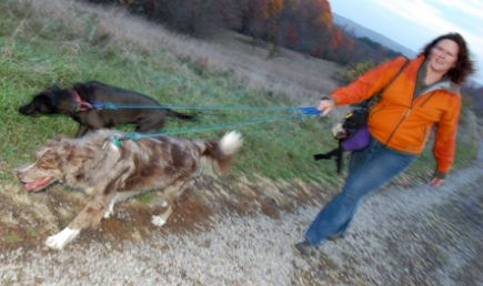 Leash=good. Pulling=bad. Photo by Mary Reed.