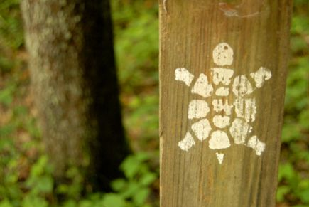 The turtle blaze marks the Sheltowee Trace Trail. Photo by Mary Reed.